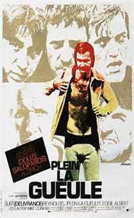 Affiche Plein la gueule (1974).