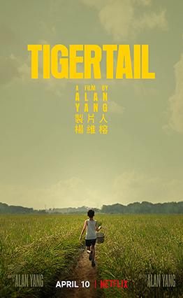 Affiche Tigertail (2020)